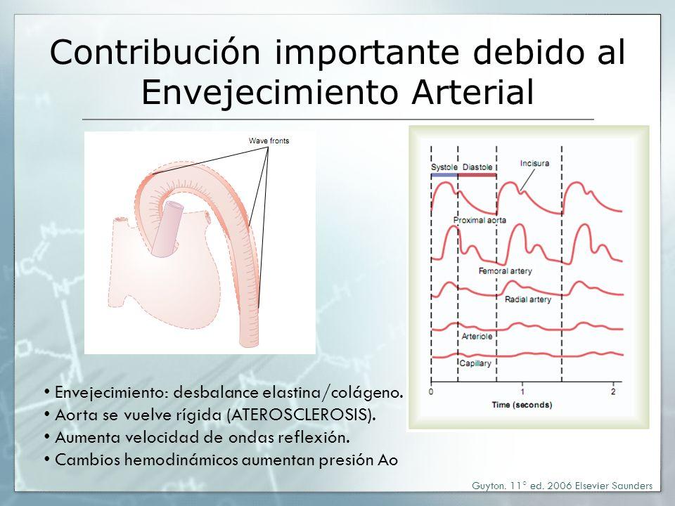 Contribución importante debido al Envejecimiento Arterial