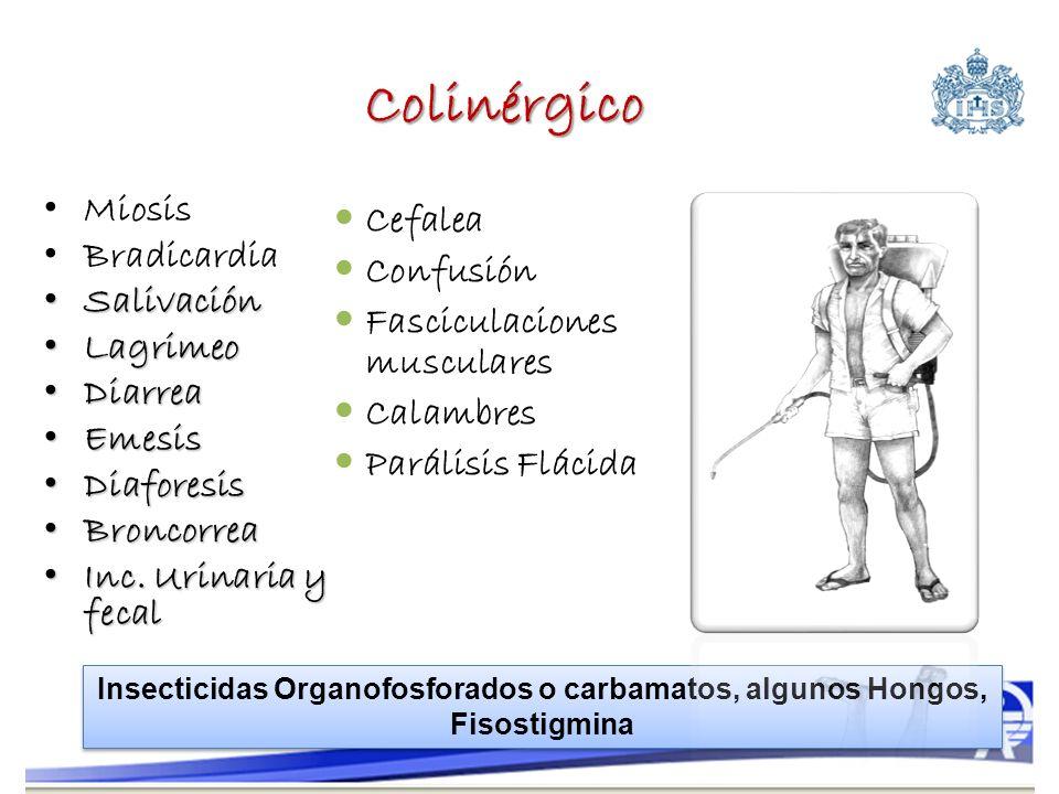 Colinérgico Miosis Cefalea Bradicardia Confusión Salivación