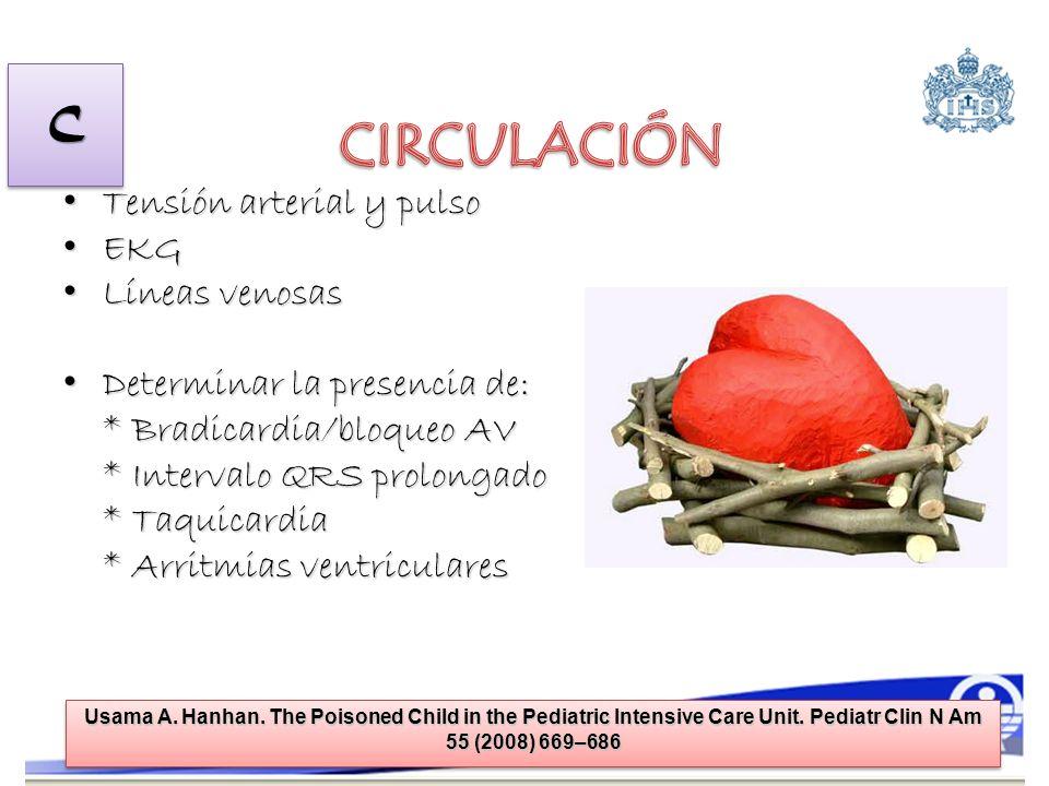 CIRCULACIÓN C Tensión arterial y pulso EKG Líneas venosas