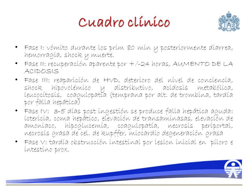 Cuadro clínico Fase I: vómito durante los prim 80 min y posteriormente diarrea, hemorragia, shock y muerte.