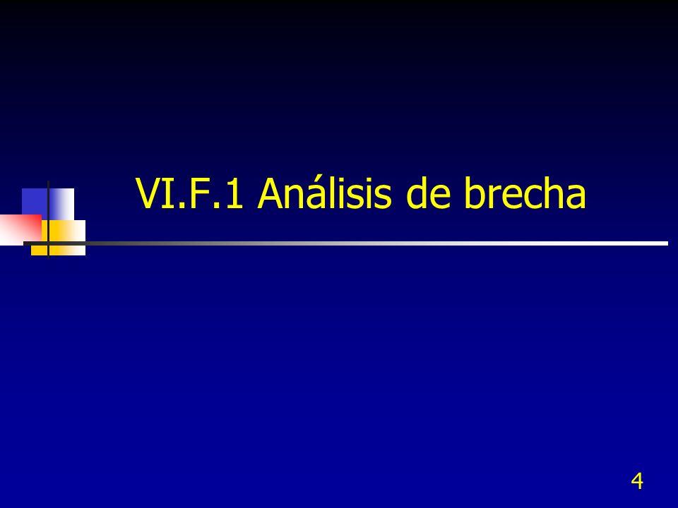 VI.F.1 Análisis de brecha