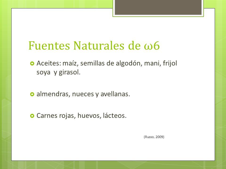 Fuentes Naturales de ω6 Aceites: maíz, semillas de algodón, mani, frijol soya y girasol. almendras, nueces y avellanas.