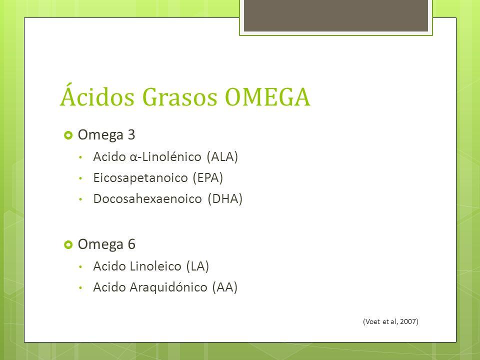 Ácidos Grasos OMEGA Omega 3 Omega 6 Acido α-Linolénico (ALA)