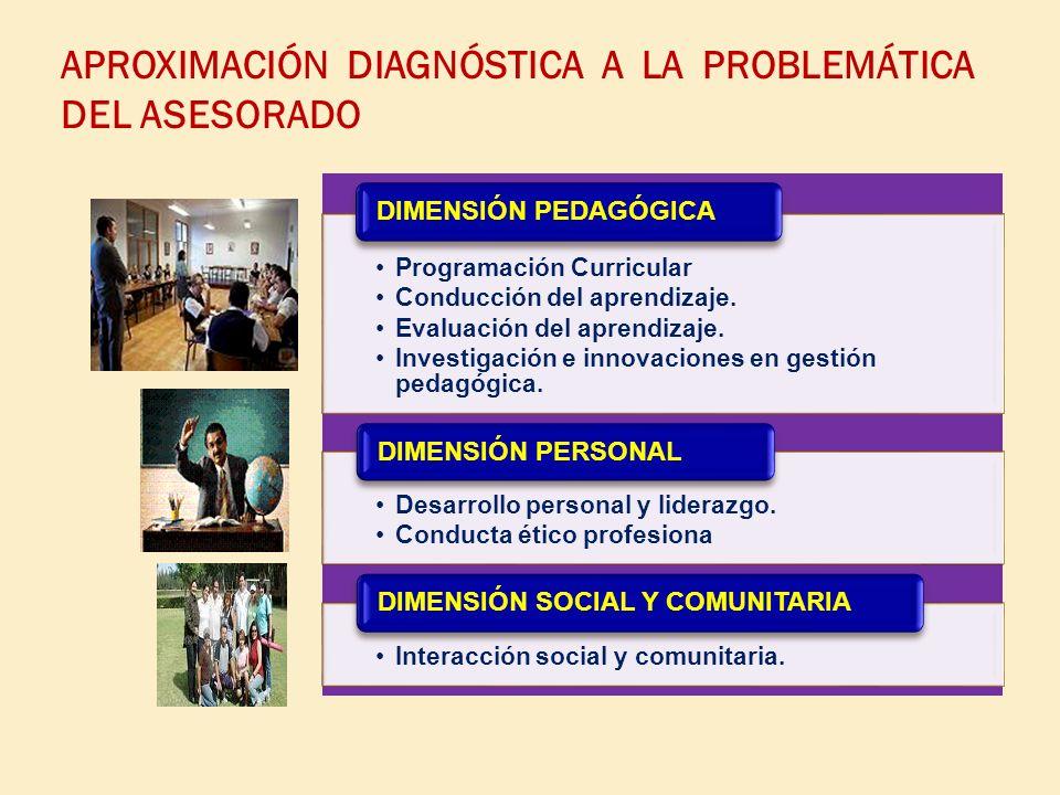 APROXIMACIÓN DIAGNÓSTICA A LA PROBLEMÁTICA DEL ASESORADO