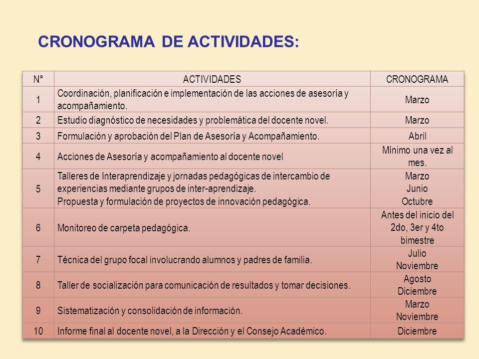 CRONOGRAMA DE ACTIVIDADES: