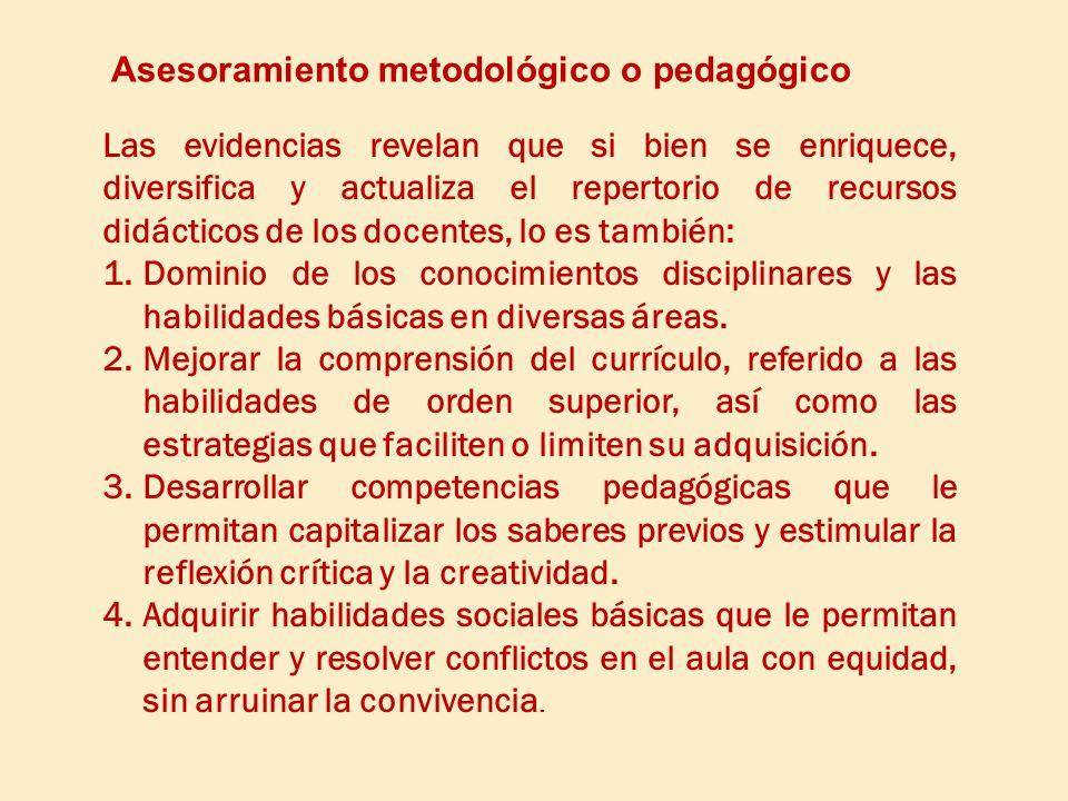 Asesoramiento metodológico o pedagógico