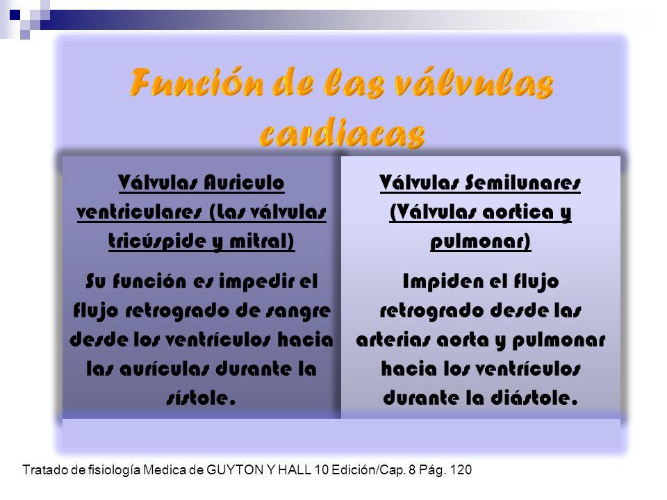Función de las válvulas cardiacas