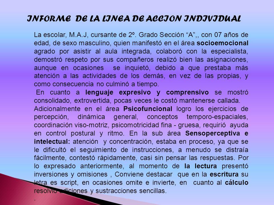 INFORME DE LA LINEA DE ACCION INDIVIDUAL
