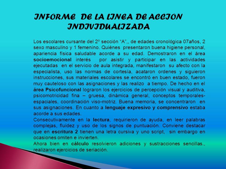 INFORME DE LA LINEA DE ACCION INDIVIDUALIZADA