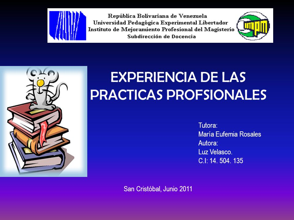 PRACTICAS PROFSIONALES