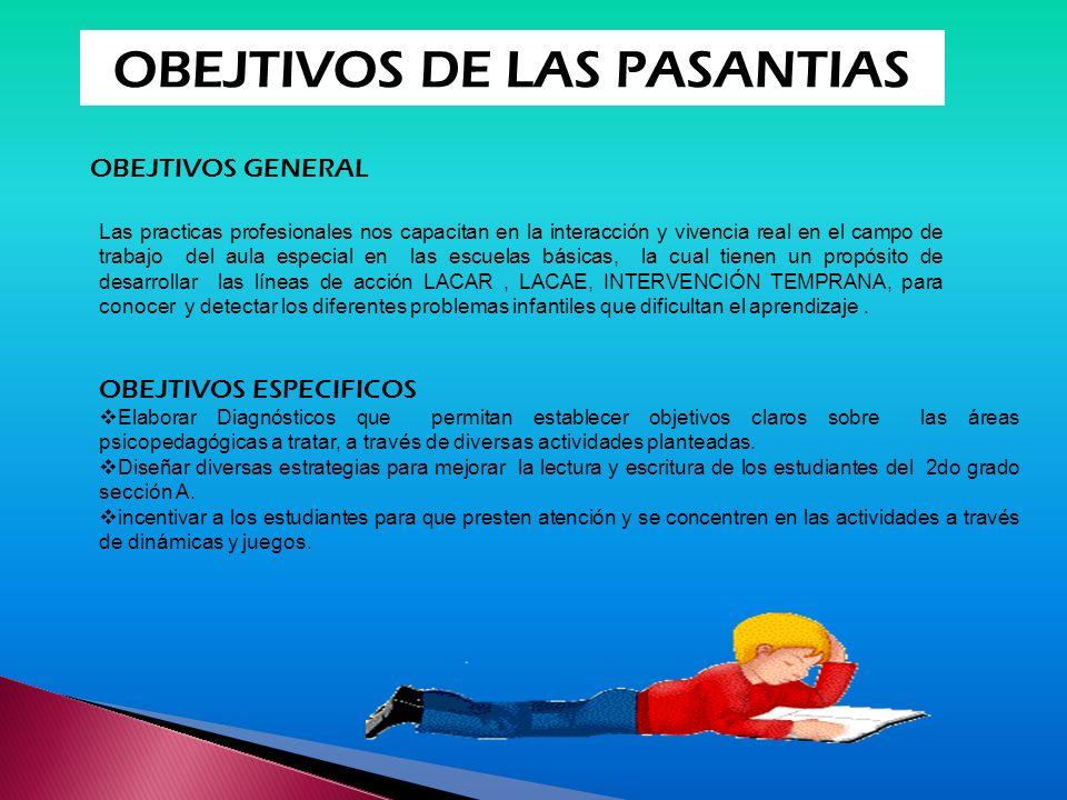 OBEJTIVOS DE LAS PASANTIAS