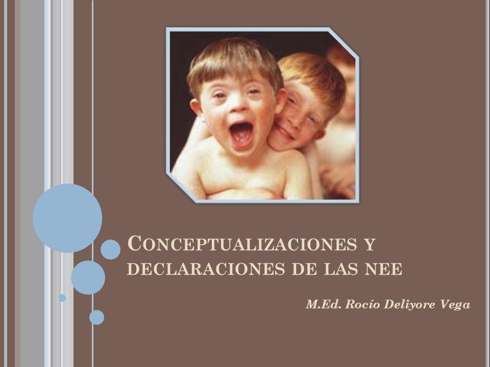 Conceptualizaciones y declaraciones de las nee
