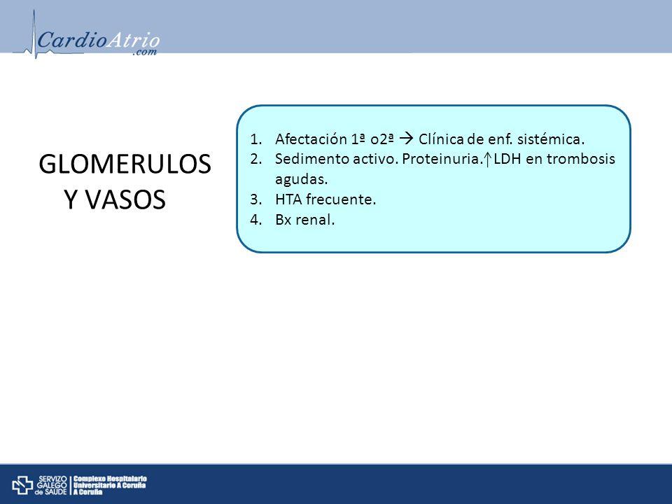 GLOMERULOS Y VASOS Afectación 1ª o2ª  Clínica de enf. sistémica.
