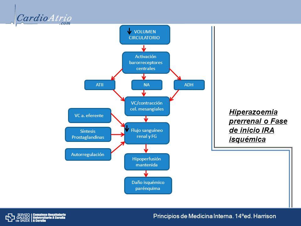 Hiperazoemia prerrenal o Fase de inicio IRA isquémica