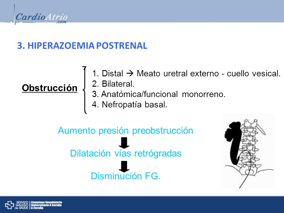 3. HIPERAZOEMIA POSTRENAL