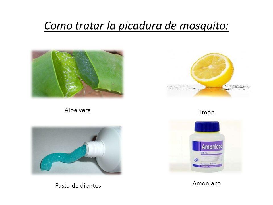 Como tratar la picadura de mosquito: