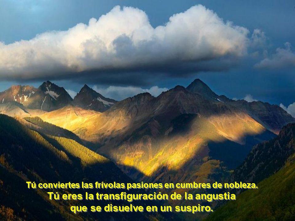 Tú eres la transfiguración de la angustia