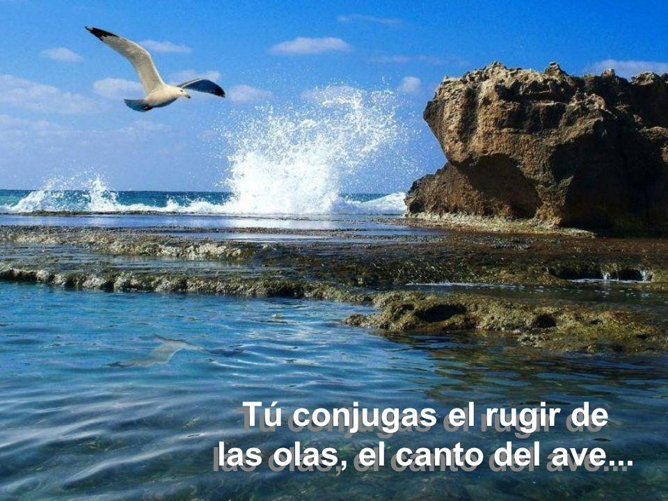 Tú conjugas el rugir de las olas, el canto del ave...