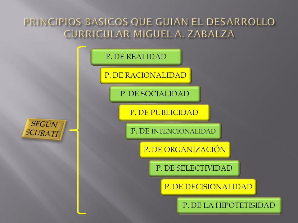 PRINCIPIOS BASICOS QUE GUIAN EL DESARROLLO CURRICULAR MIGUEL A. ZABALZA