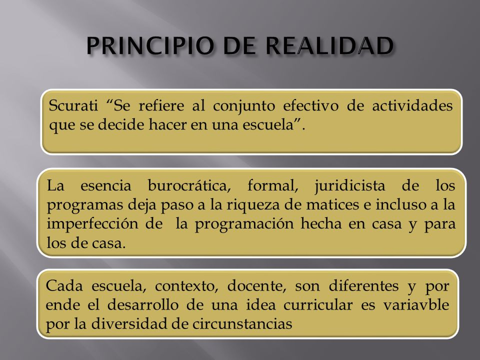 PRINCIPIO DE REALIDAD Scurati Se refiere al conjunto efectivo de actividades que se decide hacer en una escuela .