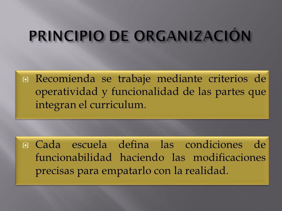 PRINCIPIO DE ORGANIZACIÓN