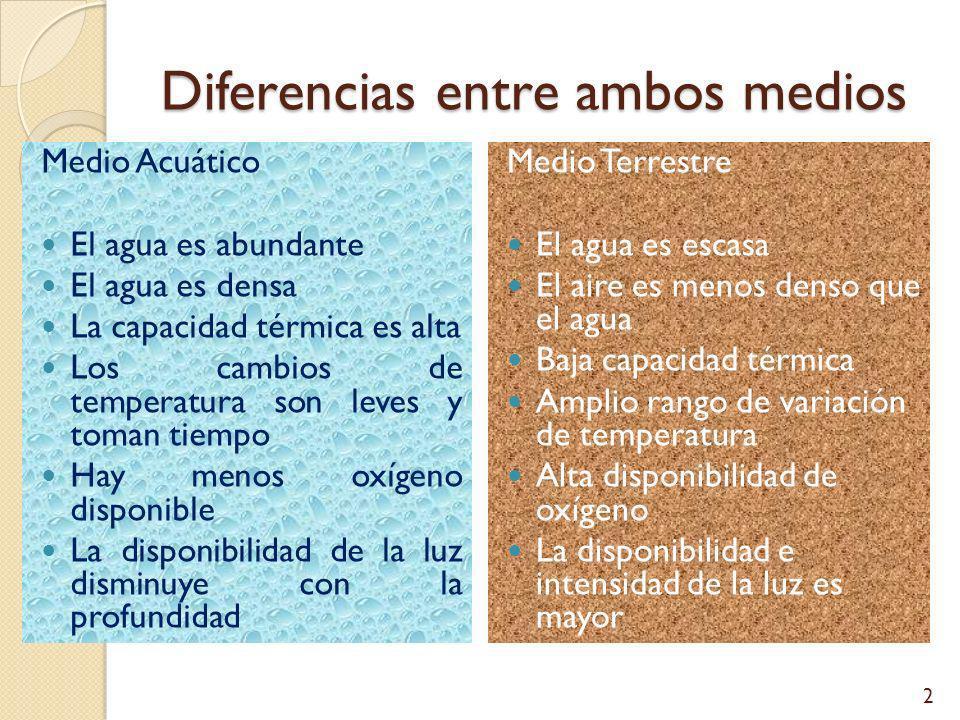 Diferencias entre ambos medios