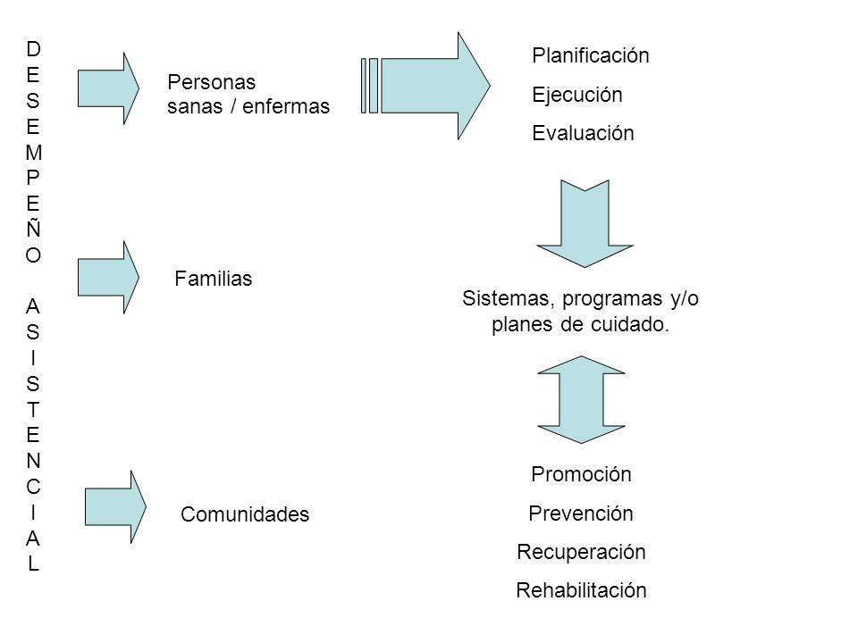 DESEMPEÑO ASISTENCIAL Planificación Ejecución Evaluación Personas