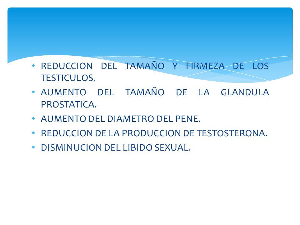 REDUCCION DEL TAMAÑO Y FIRMEZA DE LOS TESTICULOS.