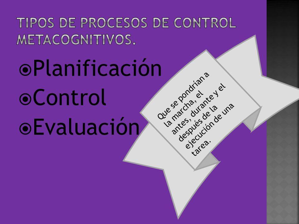 TIPOS DE PROCESOS DE CONTROL METACOGNITIVOS.