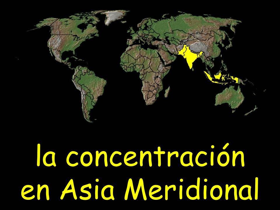 la concentración en Asia Meridional