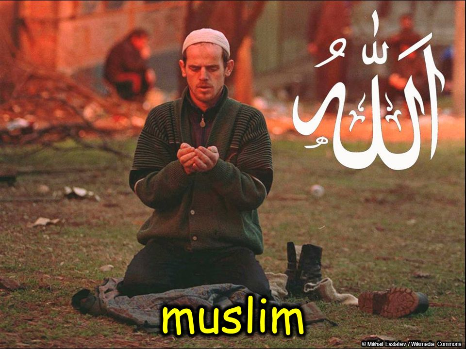 muslim © Mikhail Evstafiev / Wikimedia Commons