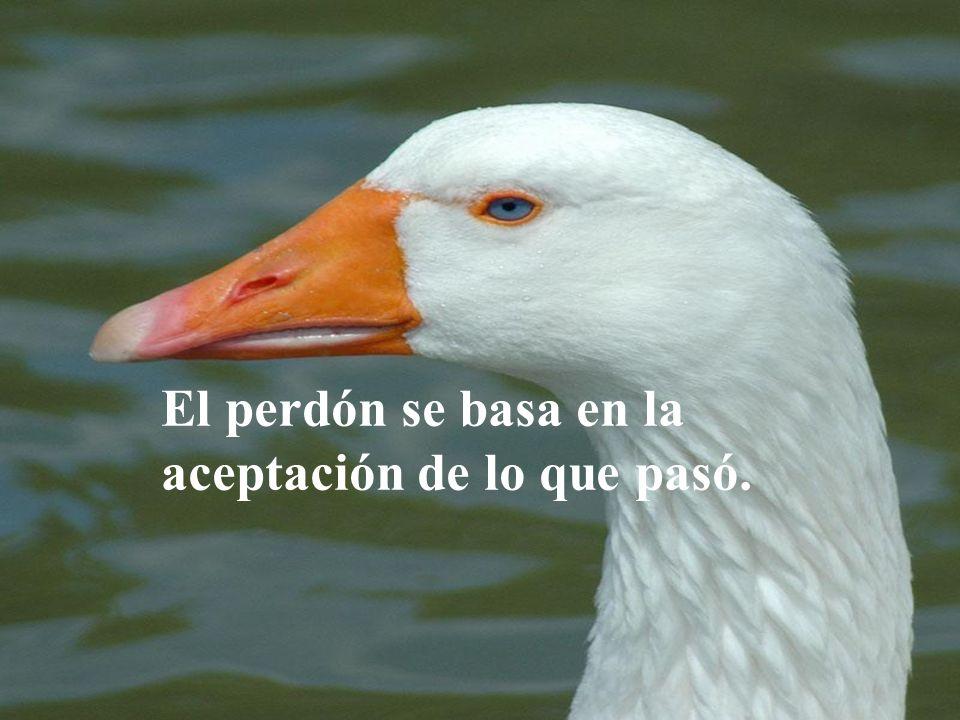 El perdón se basa en la aceptación de lo que pasó.