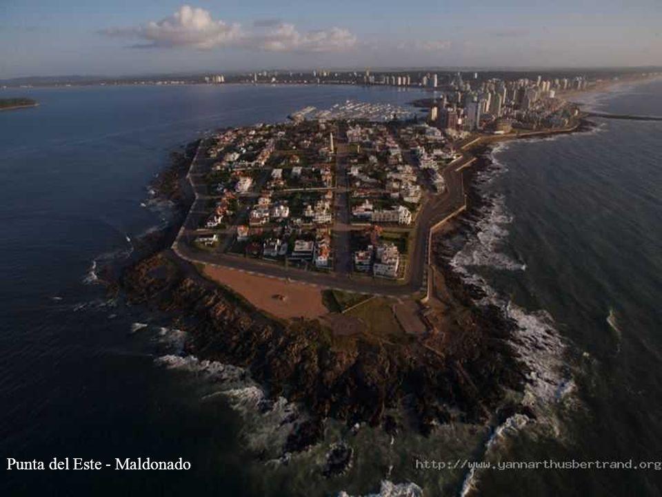 Punta del Este - Maldonado