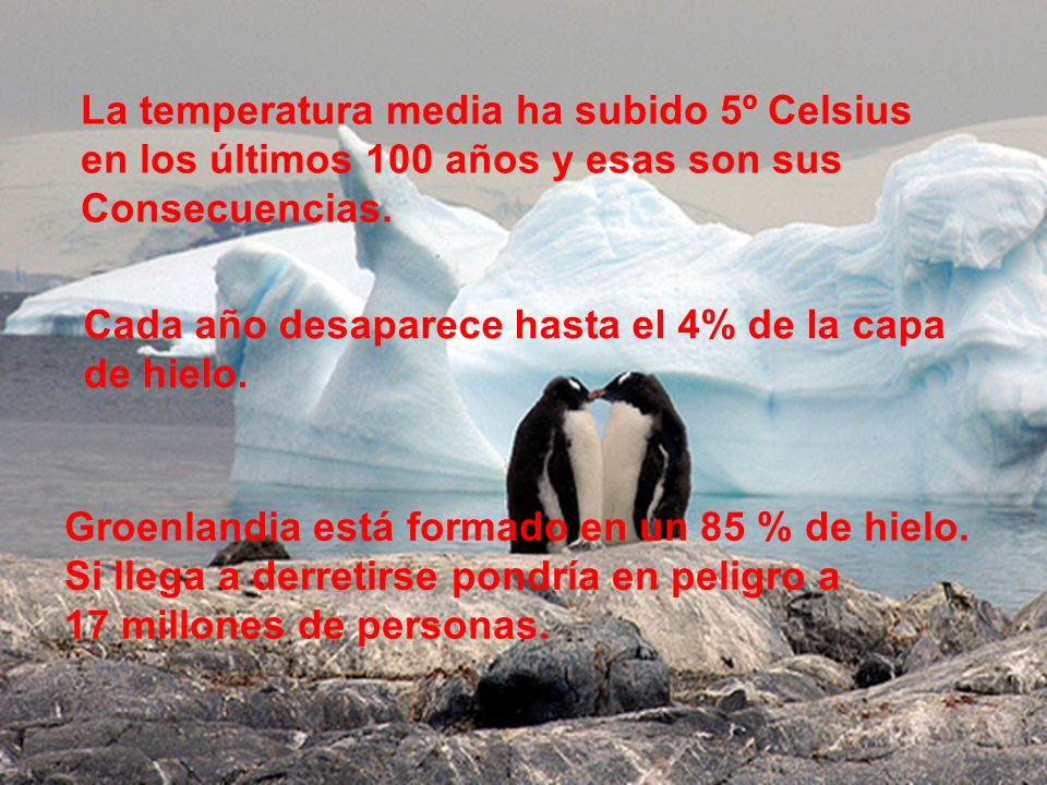 La temperatura media ha subido 5º Celsius