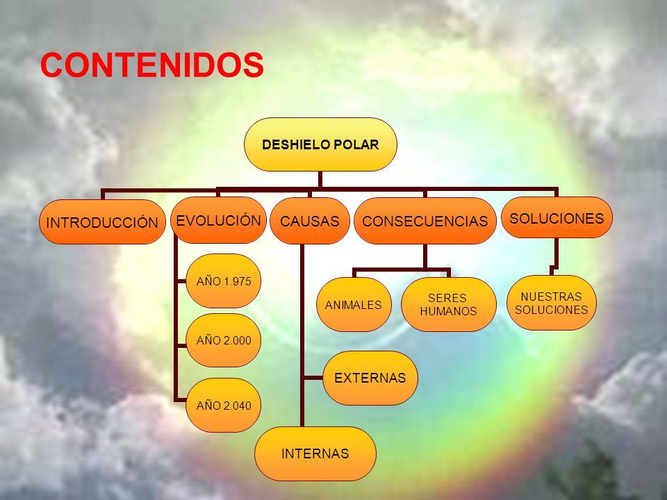 CONTENIDOS Micro LERJ