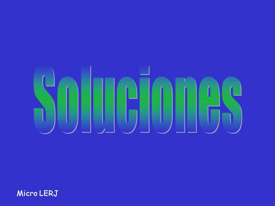 Soluciones Micro LERJ