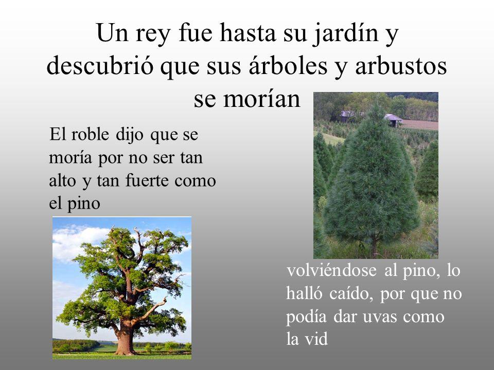 Un rey fue hasta su jardín y descubrió que sus árboles y arbustos se morían