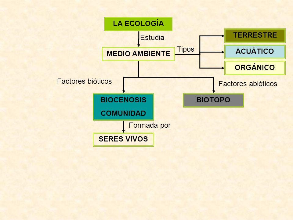 LA ECOLOGÍA TERRESTRE. Estudia. Tipos. ACUÁTICO. MEDIO AMBIENTE. ORGÁNICO. Factores bióticos.