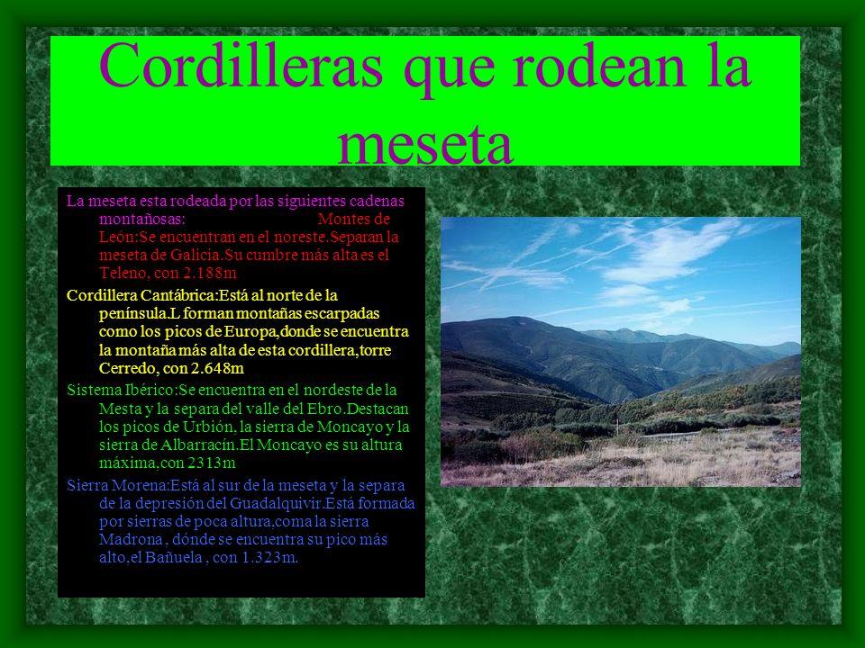 Cordilleras que rodean la meseta