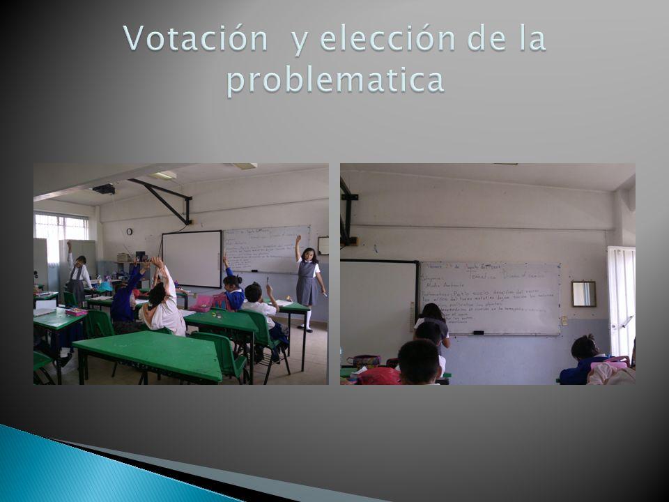 Votación y elección de la problematica