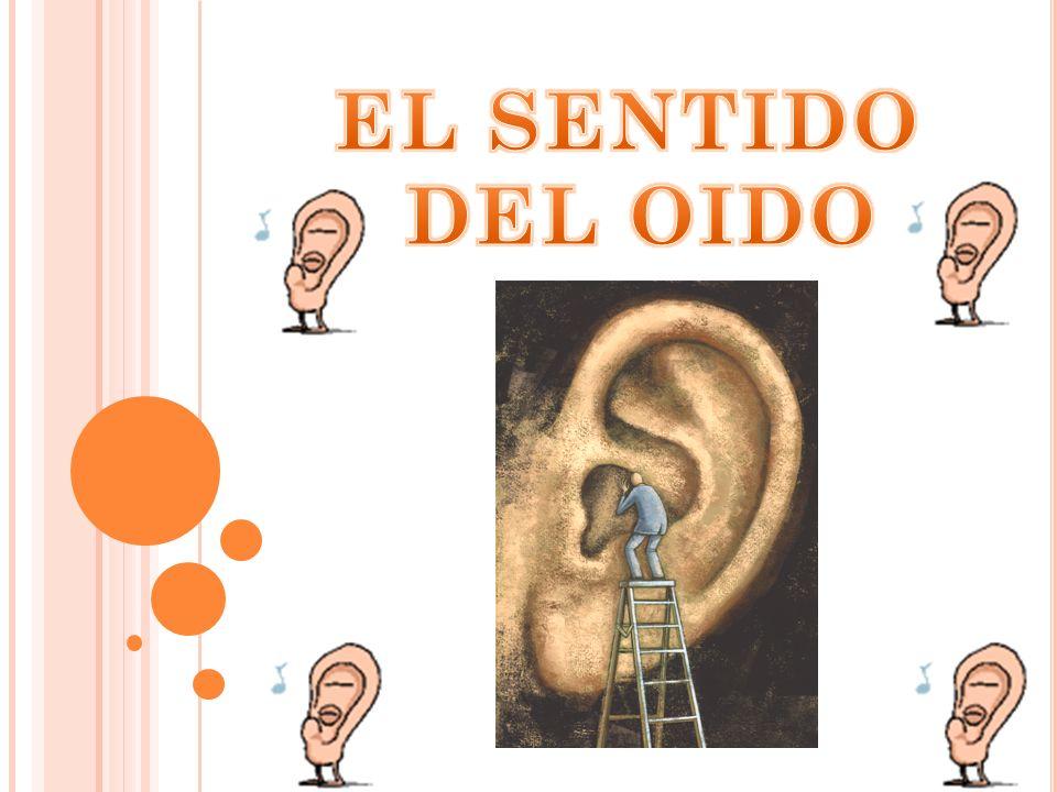 EL SENTIDO DEL OIDO
