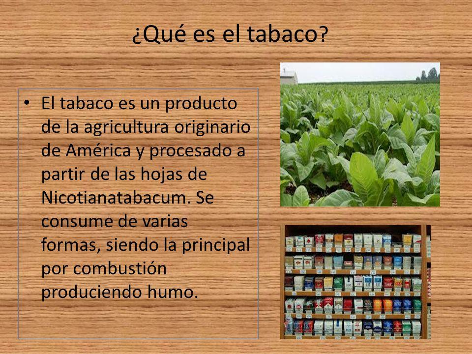 ¿Qué es el tabaco