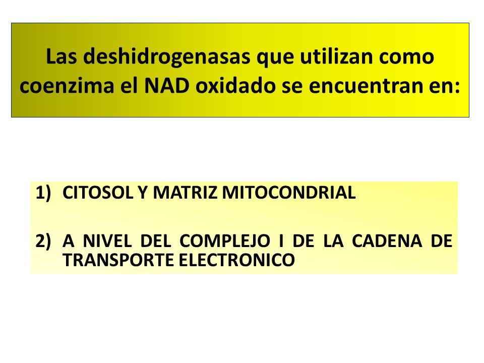 Las deshidrogenasas que utilizan como coenzima el NAD oxidado se encuentran en: