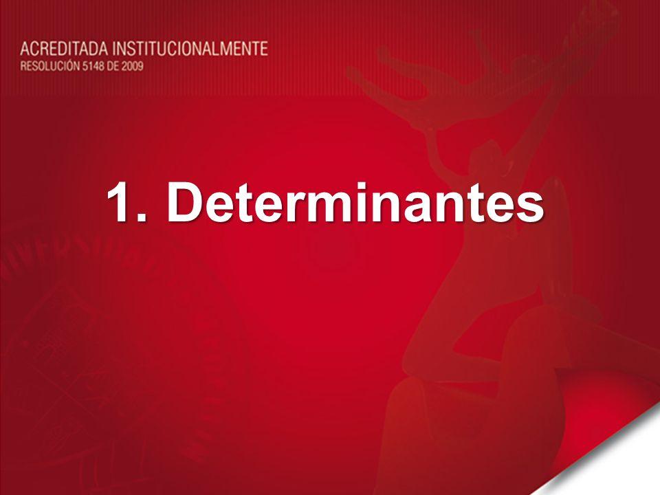 1. Determinantes