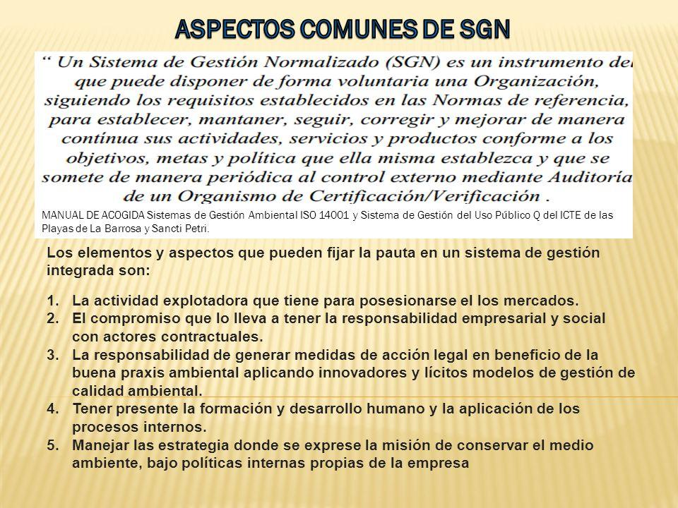 ASPECTOS COMUNES DE SGN