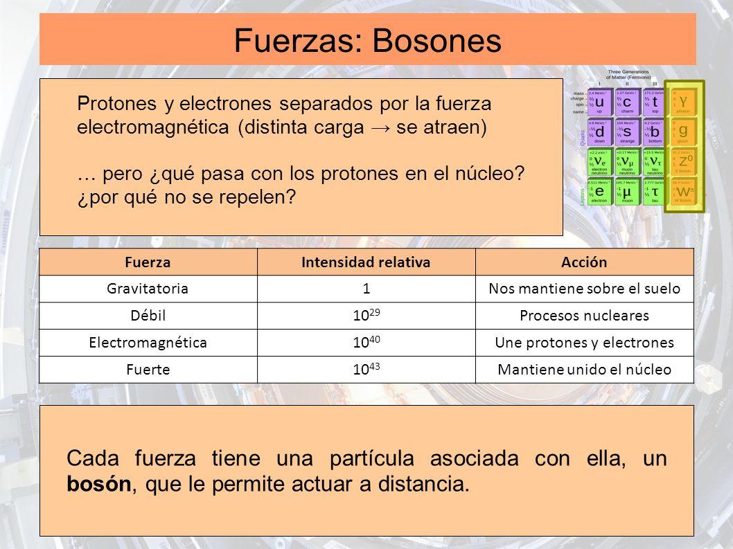 Fuerzas: Bosones Protones y electrones separados por la fuerza electromagnética (distinta carga → se atraen)