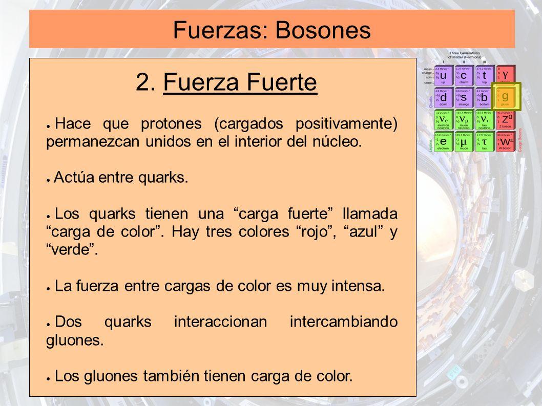 Fuerzas: Bosones 2. Fuerza Fuerte