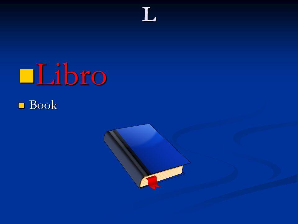 L Libro Book