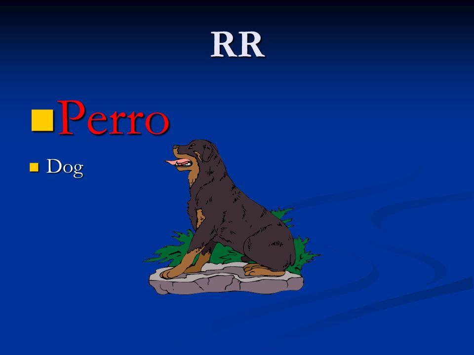 RR Perro Dog