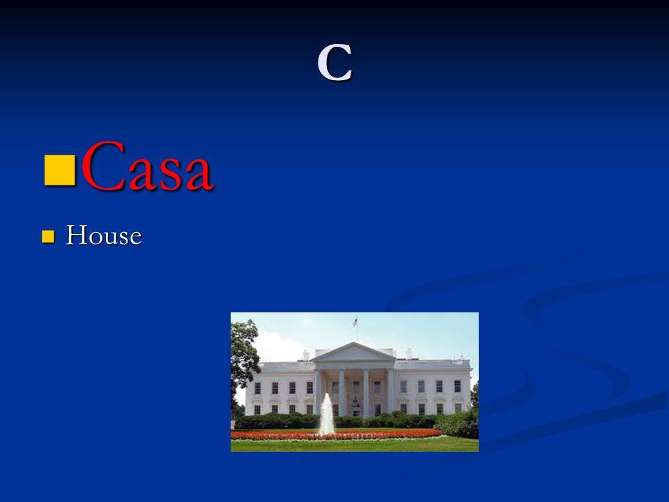 C Casa House